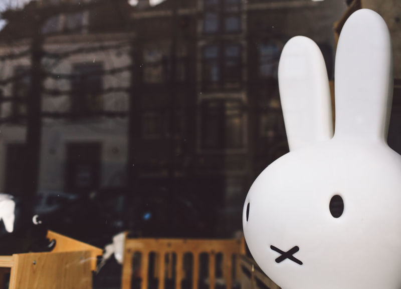 Close-up HEAD Indoors  Mascot Night No People Rabbit Reflection Window