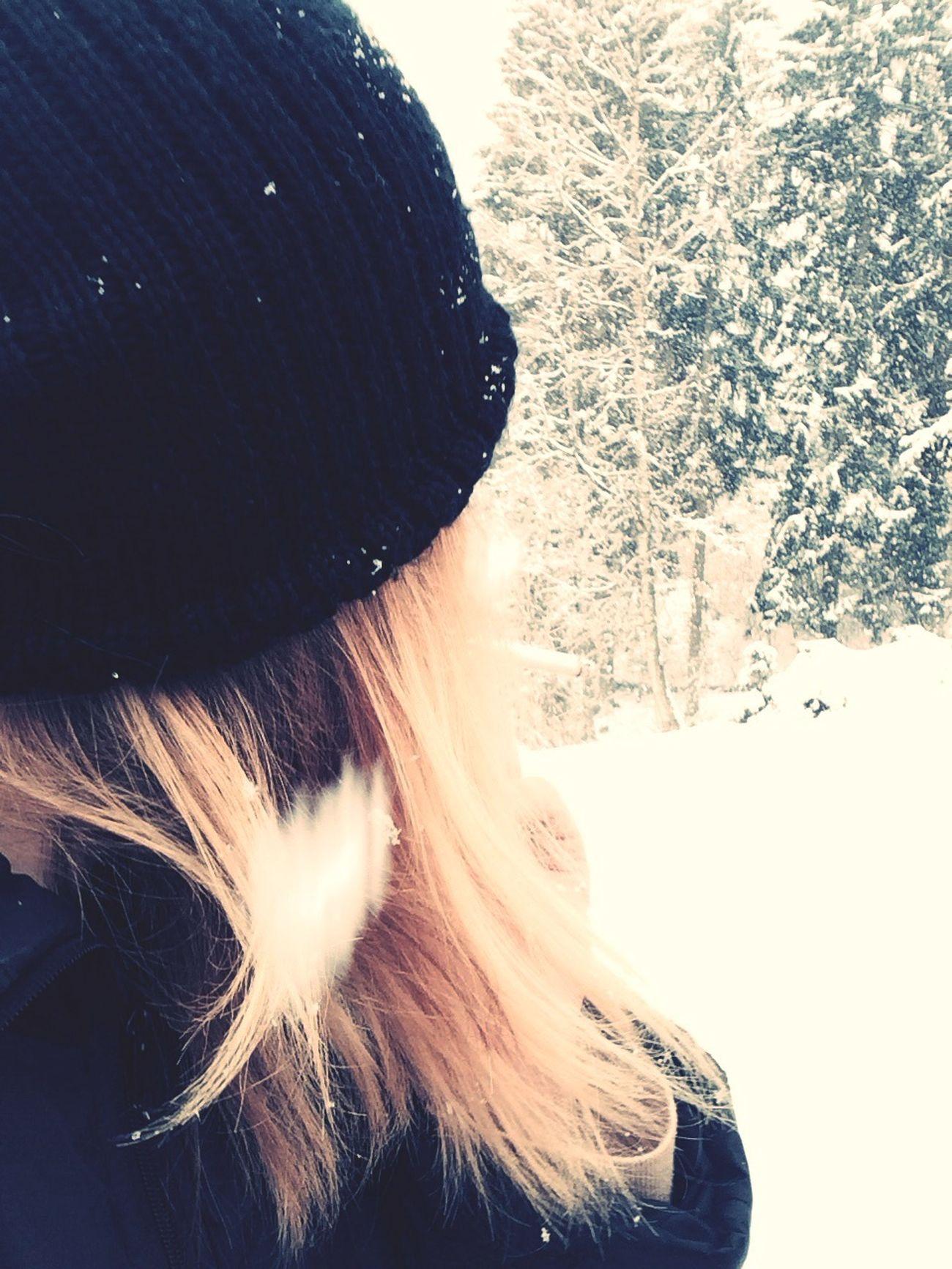 Snowfeather Human Landscape