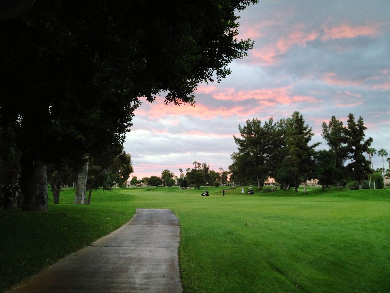 Tee Time Golfing Sunrise Palm Springs Cart Path Fairway
