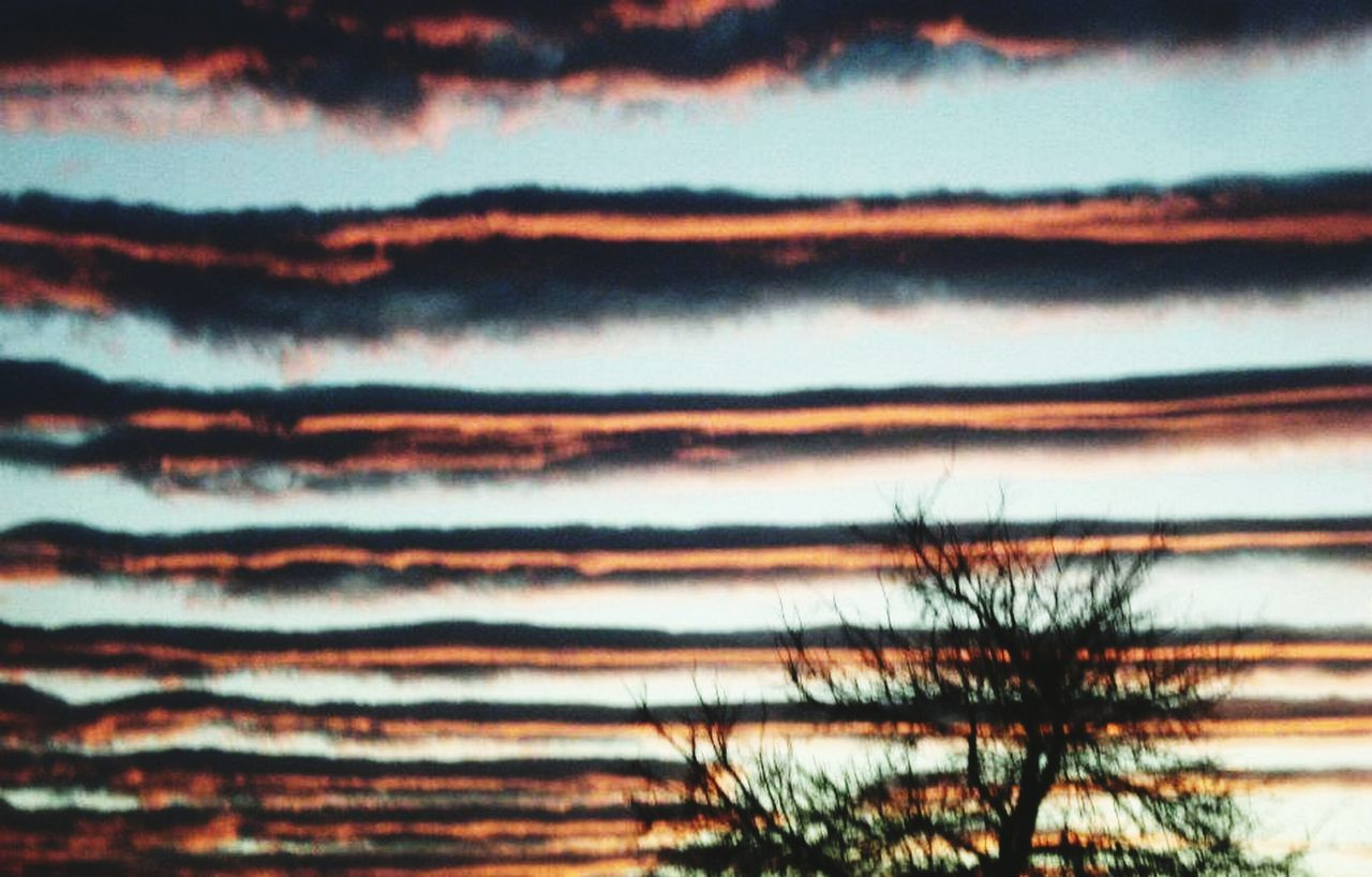 Sky Nature No People Beauty In Nature Tranquility Cloud - Sky Sunset Scenics Outdoors Tranquil Scene Tree Close-up Day