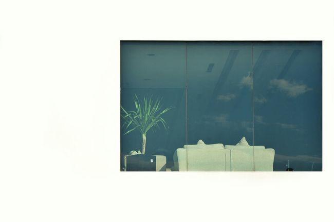 Window Architecture Minimalism Showcase July Perspective EyeEm Best Shots Fine Art Photography Open Edit Taking Photos Abstract Photography Window Reflection