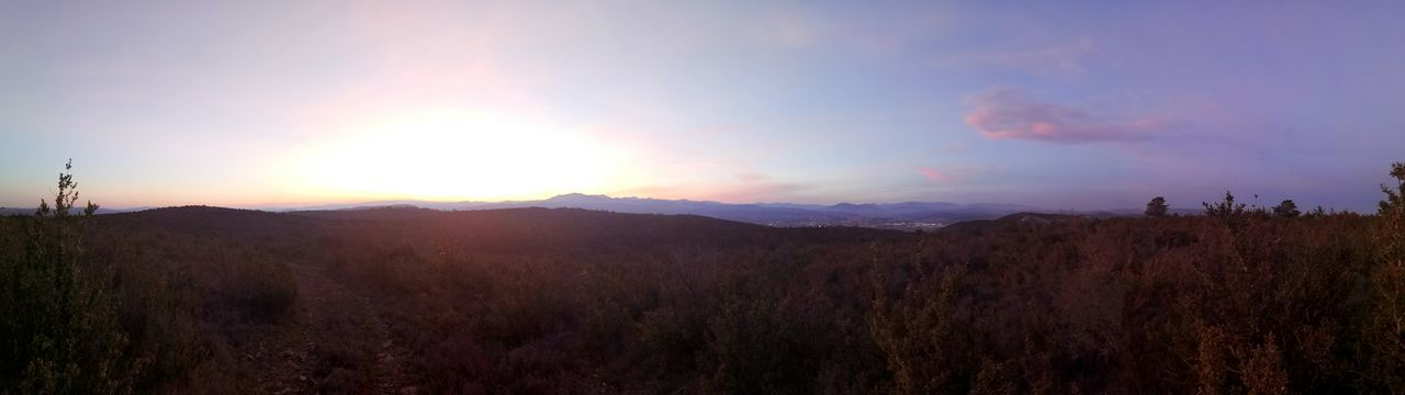 Landscape Mountain Nature Sunset Outdoors Beauty In Nature No People Tree Panoramic Panoramic Photography Panoramic Landscape Panorama Sky Day Photography Nobody Forest Tranquility Cloud - Sky Beauty In Nature Mountain Range