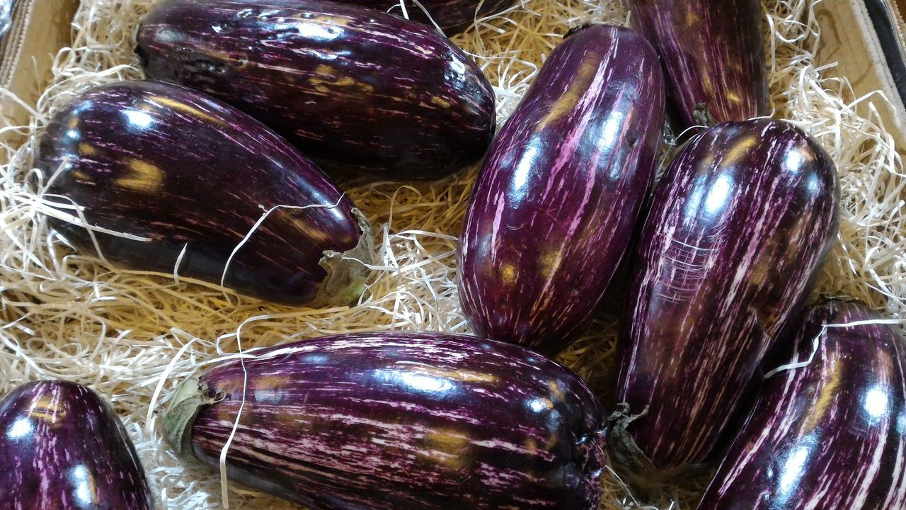 Aubergine eggplants in hay at retail market display Close-up Choice Aubergine Backgrounds Fresh High Angle View Market Multi Coloured Natural Retail  Personal Perspective Sale Display Shooping Vegetable The Shop Around The Corner Vegetarian Food