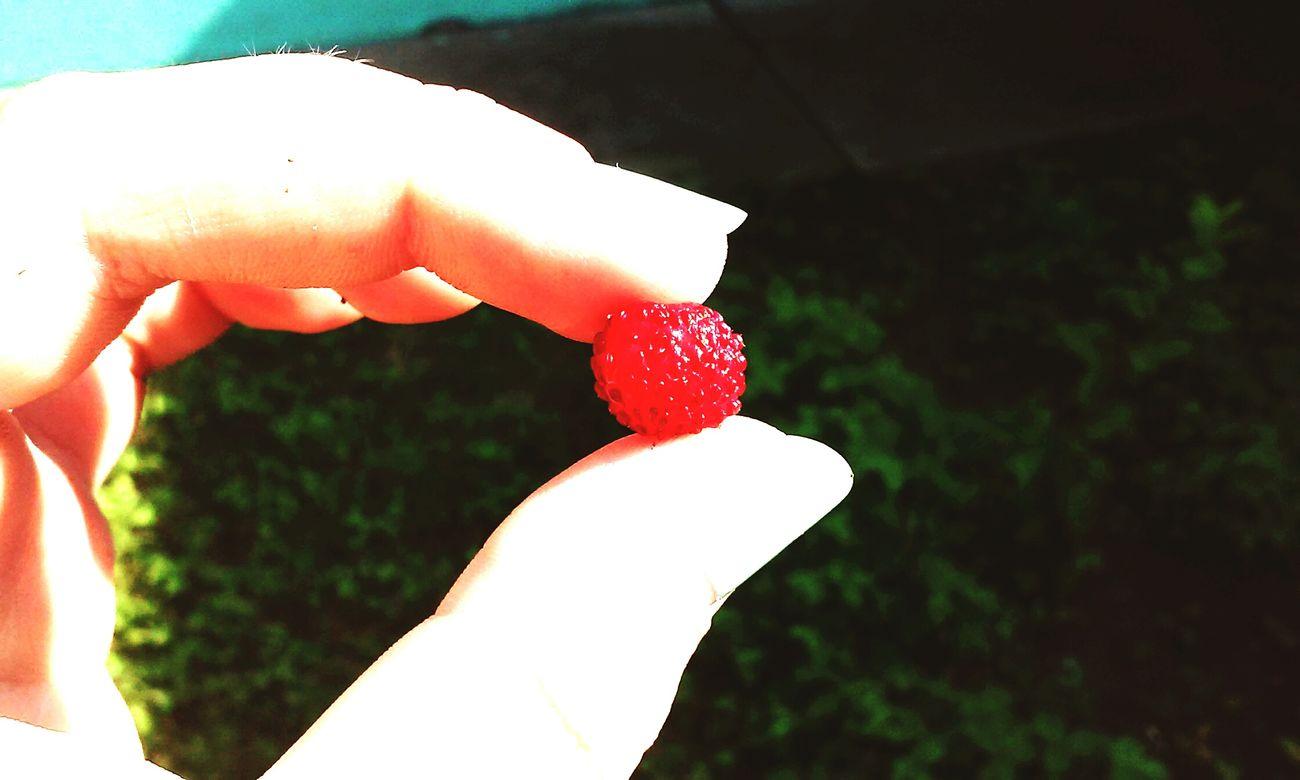 Summer ☀ Ukraine 💙💛 М... ❤❤❤