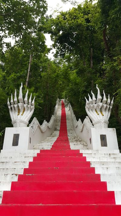 Red Day Tree Outdoors No People Moutain View Stairway Buddisttemple วัดพระธาตุดอยเล็ง Buddism Stairway Construction Mountain Range Stairs Tree Built Structure