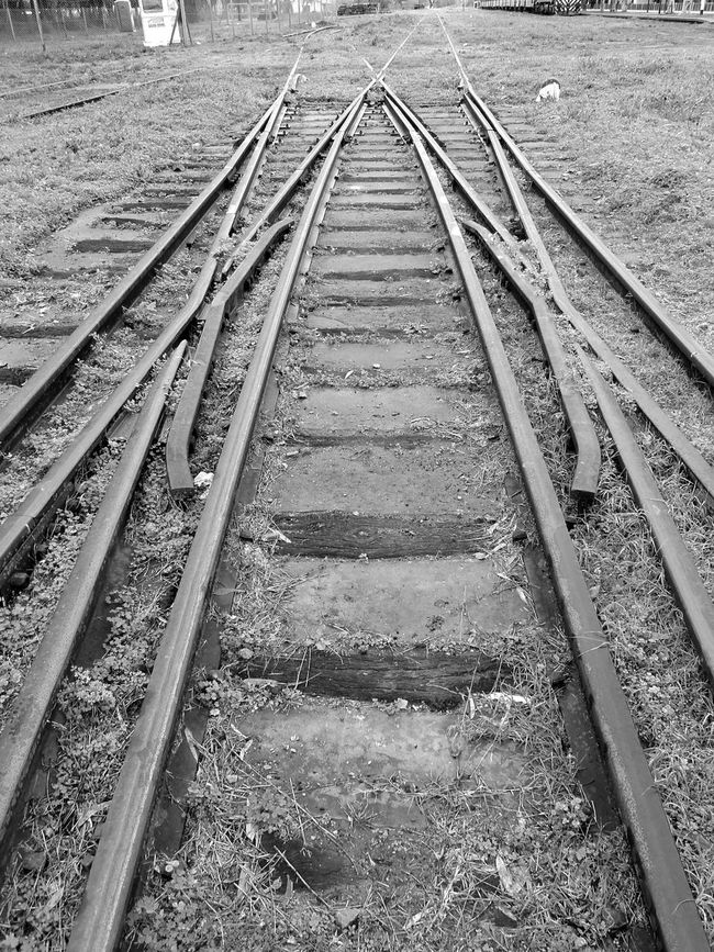 Taking Photos Simetry Train Rails Bnw_friday_eyeemchallenge Blackandwhite Blsckandwhite Blackandwhite Photography