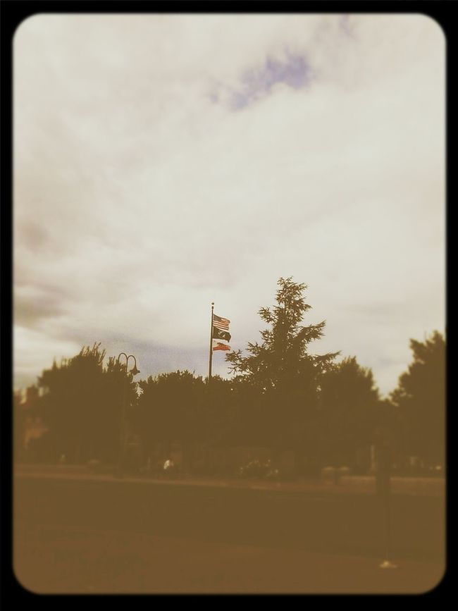 POW MIA Flags Chico, California Park