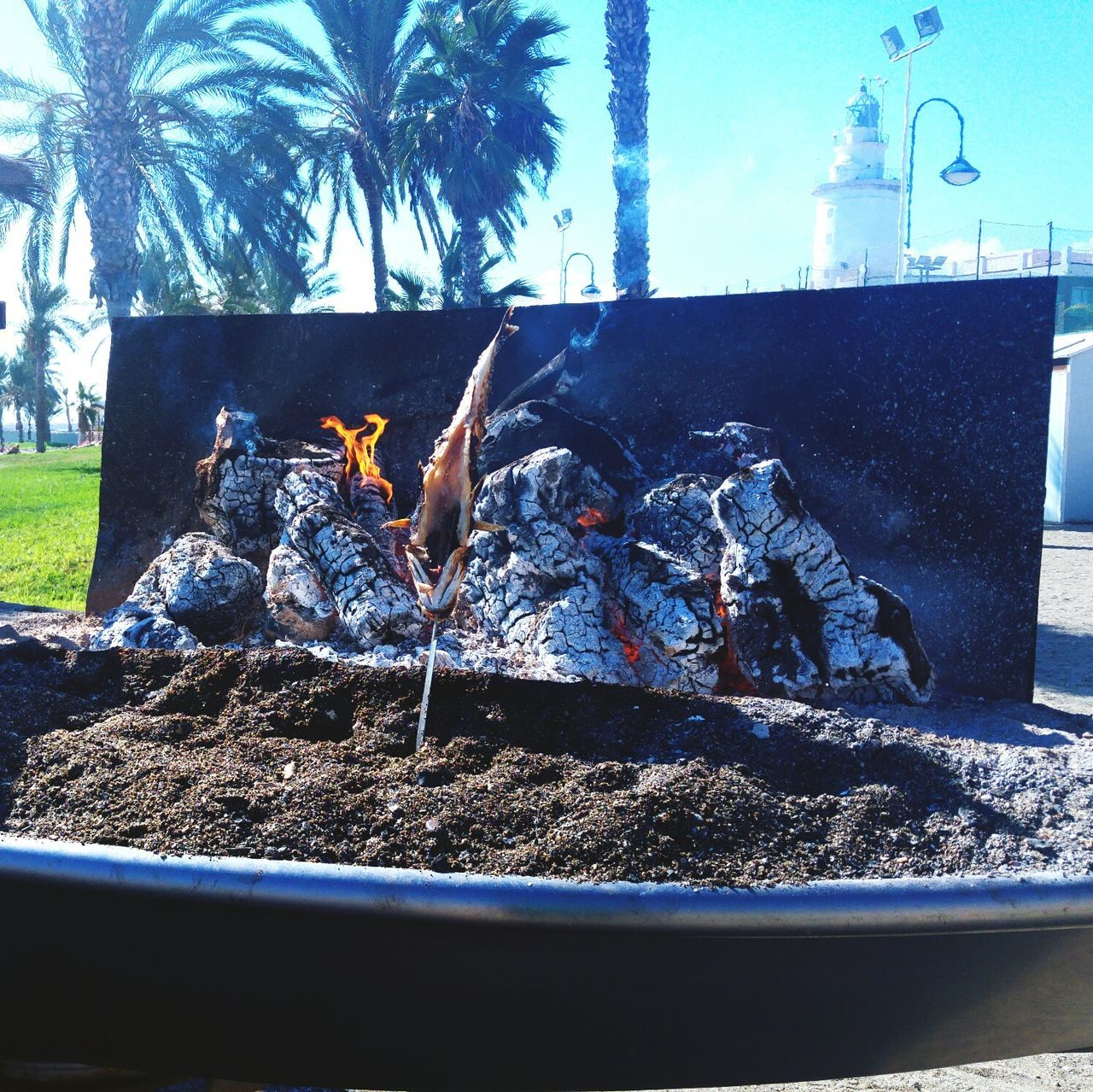Outdoors Day Coal Fire Plancha Barbecue SPAIN Malaga Beach Time Beachtime Beach Ready-to-eat Food Healthy Eating Freshness Mar Seafoods Sea Food Sea Food And Drink Fish