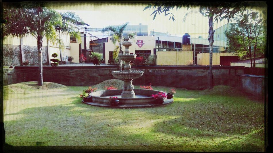 Fuente de casa camarena , Tequila Zumbaconangelito Arandas