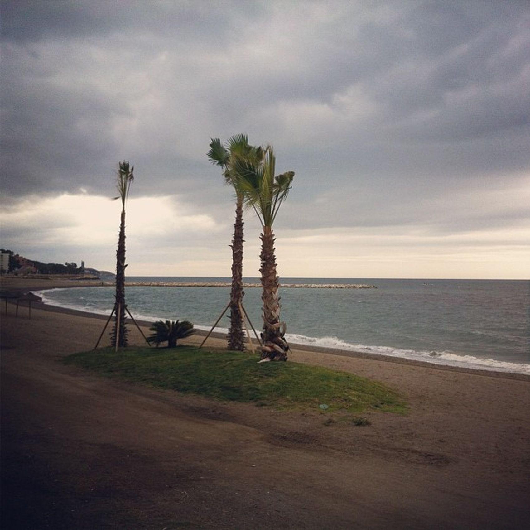 Hasta la próxima del Wine Up Tour en Málaga