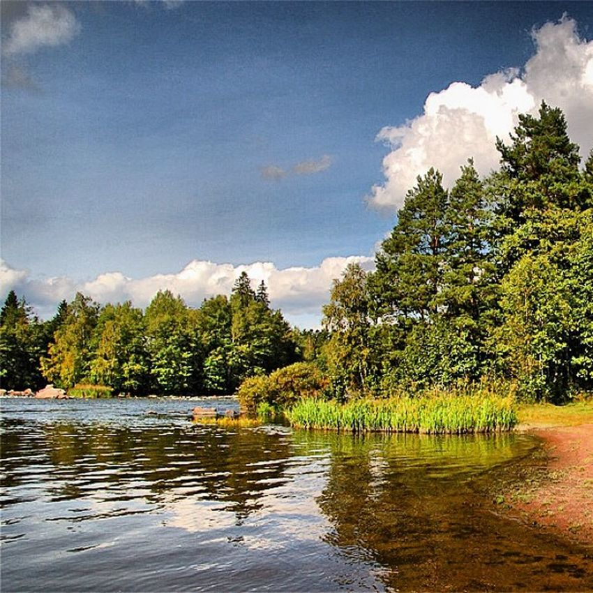 Finland River Kymiyoki Flyfishing  salmon trout summer sky water