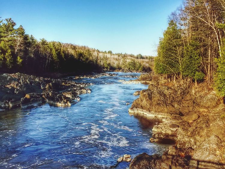 Early Spring at Jay Cooke State Park Getting In Touch Enjoying The Sun Minnesota