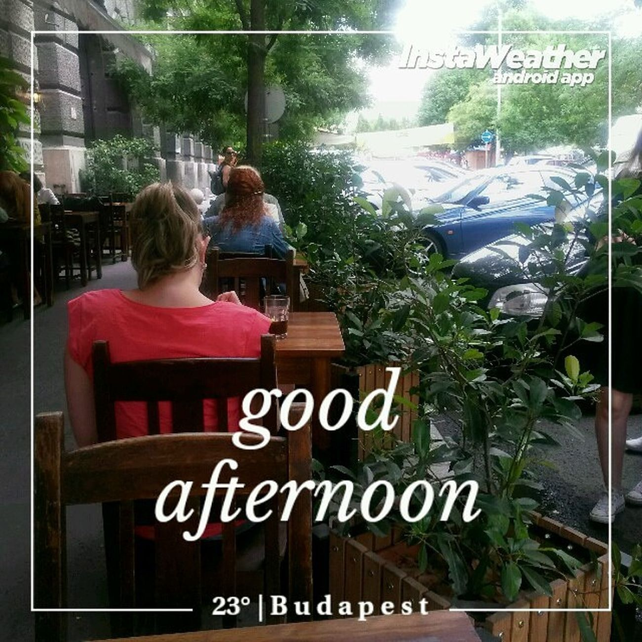 A brownie hunting stage :) Instaweather Instaweatherpro Weather Wx android budapest magyarország day summer clear evening hu