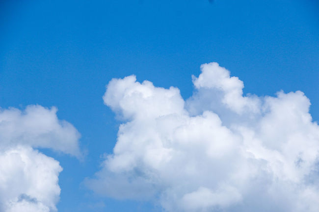 Backgrounds Beauty In Nature Blue Cloud - Sky Cloudscape Cumulus Cloud Day Fluffy Heaven Horizontal Low Angle View Nature No People Outdoors Scenics Sky Sky Only Softness Sunlight Tranquility Weather