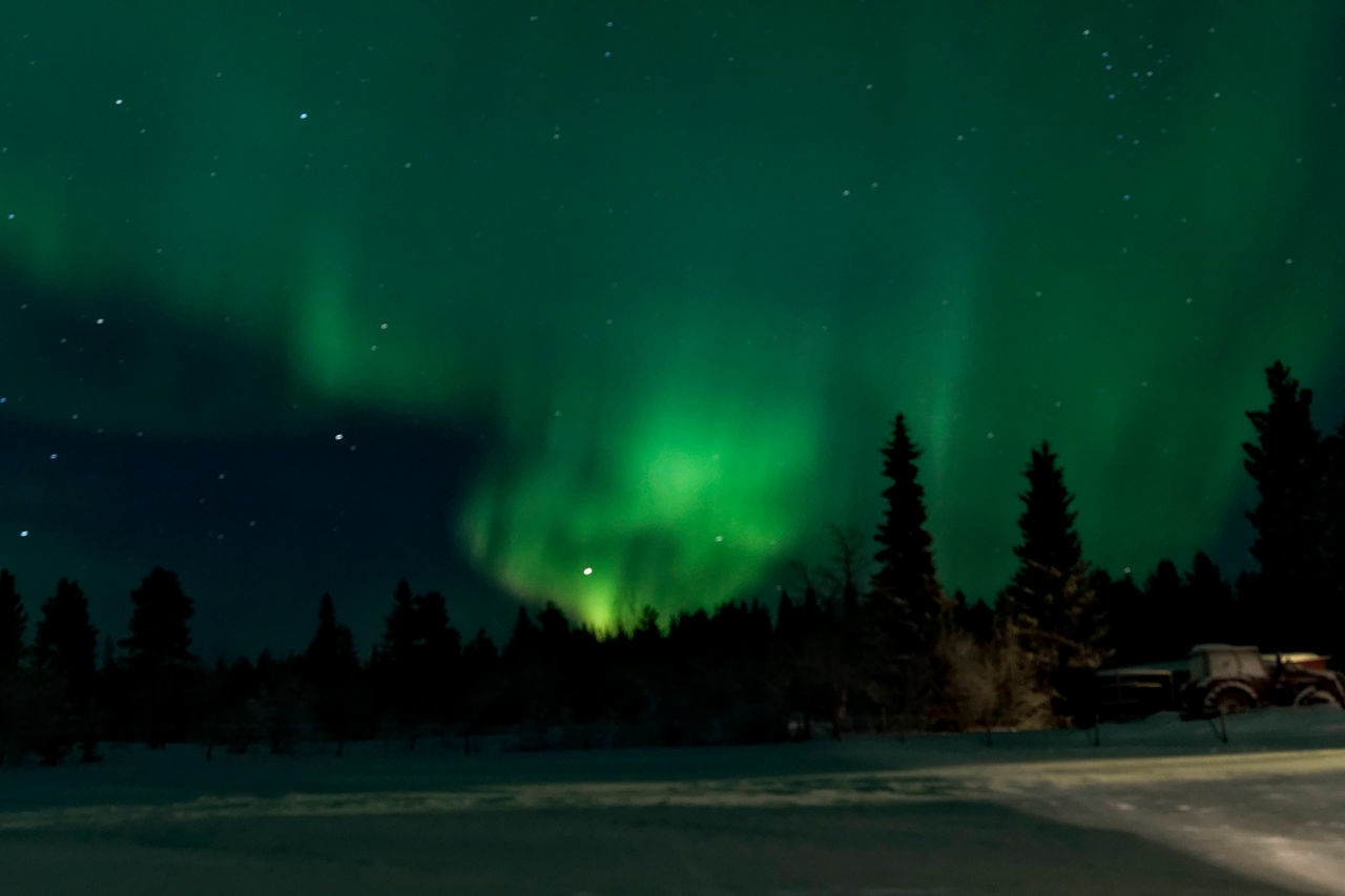 Astronomy Aurora Borealis Aurora Polaris Beauty In Nature Cold Temperature Constellation Green Color Illuminated Landscape Natural Phenomenon Nature Night No People Outdoors Polar Climate Polarlichter Scenics Sky Snow Space Star - Space Tranquility Travel Destinations Tree Winter Neighborhood Map The Great Outdoors - 2017 EyeEm Awards