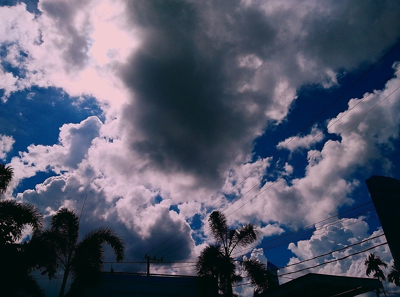 cloud - sky, sky, low angle view, nature, silhouette, beauty in nature, tree, no people, scenics, outdoors, day
