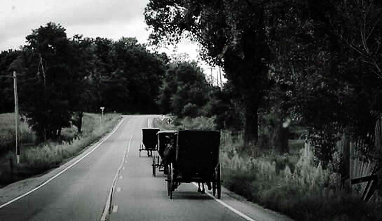 Amish Country Horseandbuggy Country Backgrounds Fields Trees