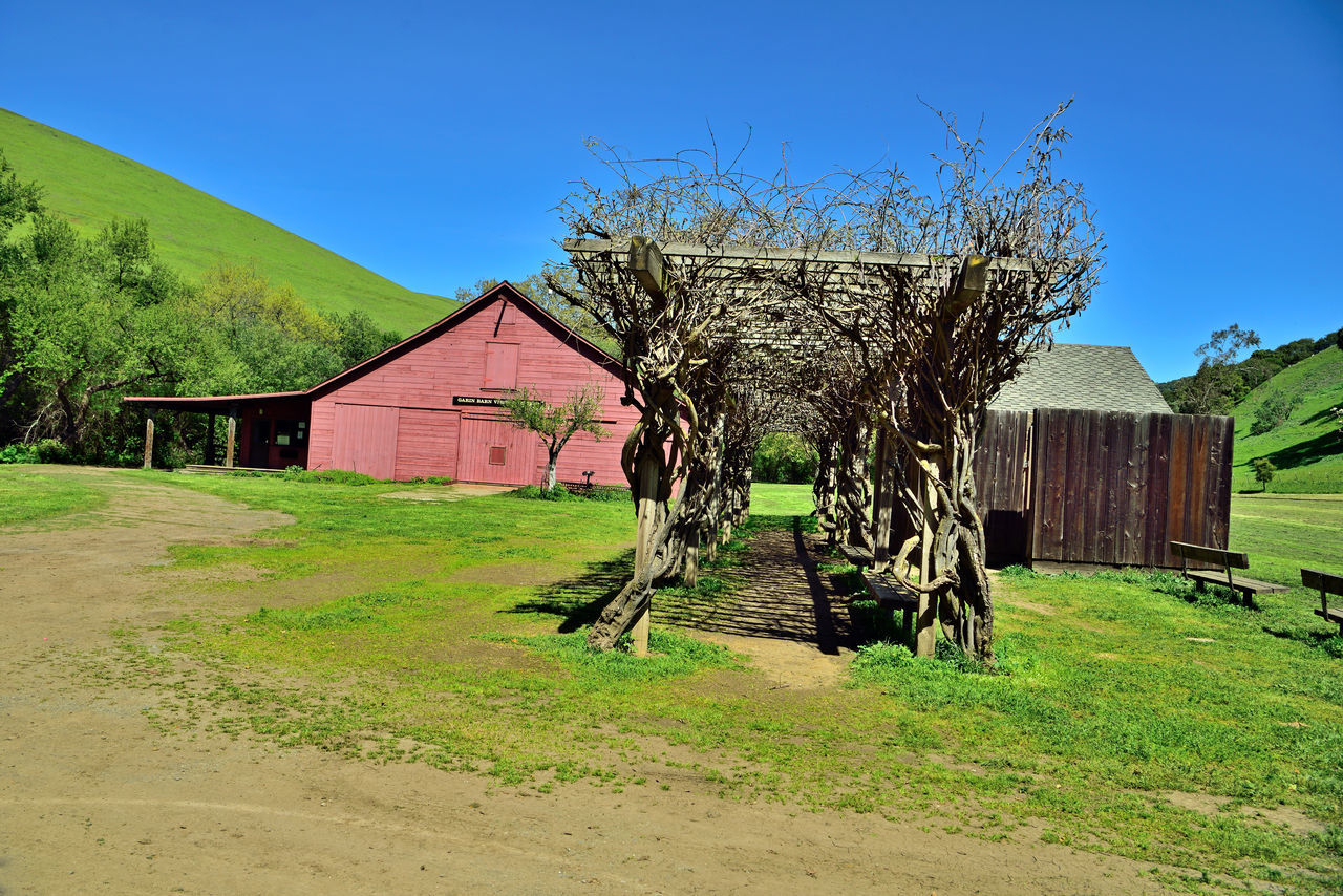 Visitor's Barn @ Garin 2 Hayward, Ca. H.A.R.D Garin Regional Park Eastbay Hills Red Barn Eastbay Regional Park District Canyon & Valleys Rolling Hills Green Meadows Apple Orchards Apple Tree Blossoms  Wooden Benches Pergola Wisteria Vines Storage Shed Blue Sky Landscape Landscape_Collection Landscape_photography Nature Beauty In Nature Nature_collection