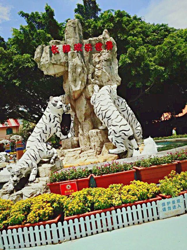 I am in Guangdong , China .