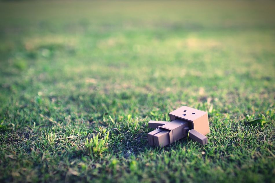ダンボーとの撮影はこれにて終了。 Danbo Hello World EyeEm Gallery EyeEm Best Shots Focus On Background Relaxation Nature Green Resting
