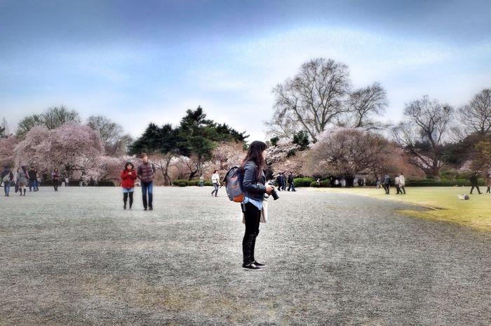 EyeEm Tokyo Meetup 8 Spring Into Spring Spring Sakura2015 Landscape Landscape_Collection Landscape_photography Spring Report Sky Collection Skyporn