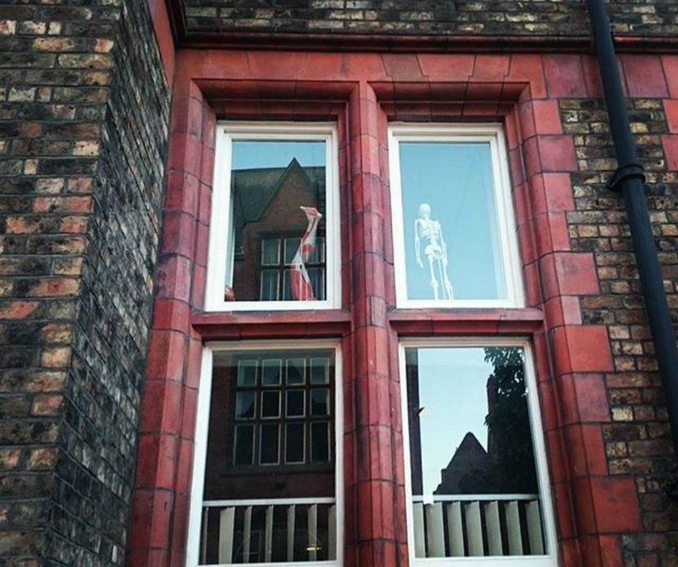 Hey kids, are you ready to go back school? Liverpool England Window Brownlowhill Universityofliverpool Redbricks Reflection Muscles Leg Skeleton Weirdthings Ventana Pierna Esqueleto Cosasturbias