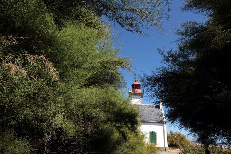 Phare Nature Beach Île De Groix Nature Photography Travel Photography Silhouette