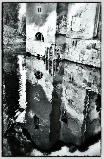 Reflection Blackandwhite Black And White