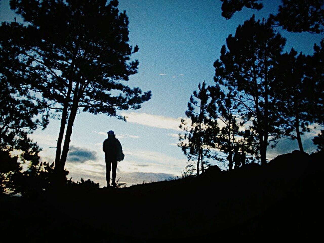 When being brave is the only thing left to do. Eyeem Philippines Breeze Outdoors Sky Nature Cloud - Sky Tranquility Ulap Mountain Cordilleras Solace EarlyMornings Trees And Sky Hikes Silhouette Boondocks People Above Aboveandbeyond