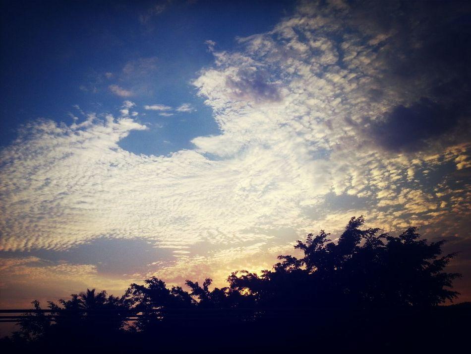 Uma linda tarde ontem!!
