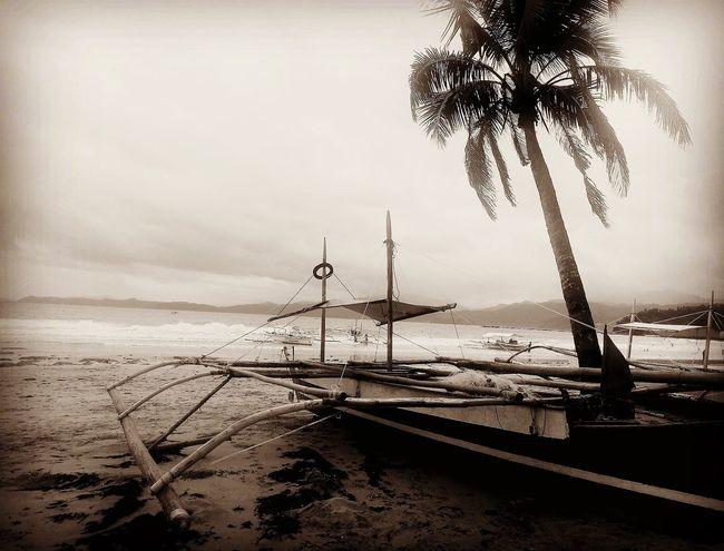 Source of Living. Palawan Palawan Philippines PalawanPhilippines Palawan Ph Palawan, Philippines Puertoprincesa Puerto Princesa Puerto Princesa City Palawan Philippines Boat Boating Livelihood Livelihoods