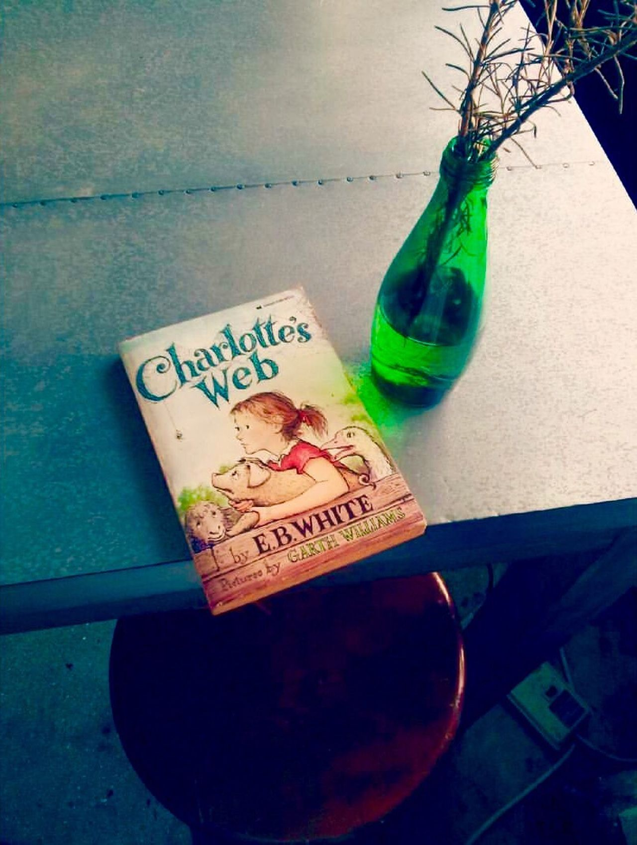 Book From Childhood CharlottesWeb Hanging Out Downtown Honolulucoffee Honolulu, Hawaii Downtown Cafe
