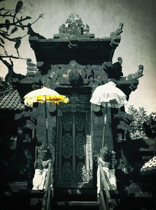 Bali Colour Splash Bestoftheday EyeEm Best Shots