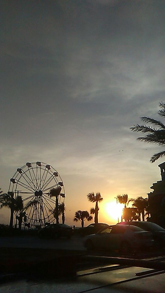 Morning Sunrise Showcase: April Beautiful View Sunrise Photography Capturing The Sun Early Morning Keeping It Simple Ferris Wheel Salty Air Glistenandglow Spring 2016 Sunshine Toes In The Sand Palm Trees Enjoy The Little Things Sunrise_Collection Enjoy Life Beauty All Around Great Start In A Day Texas Skies