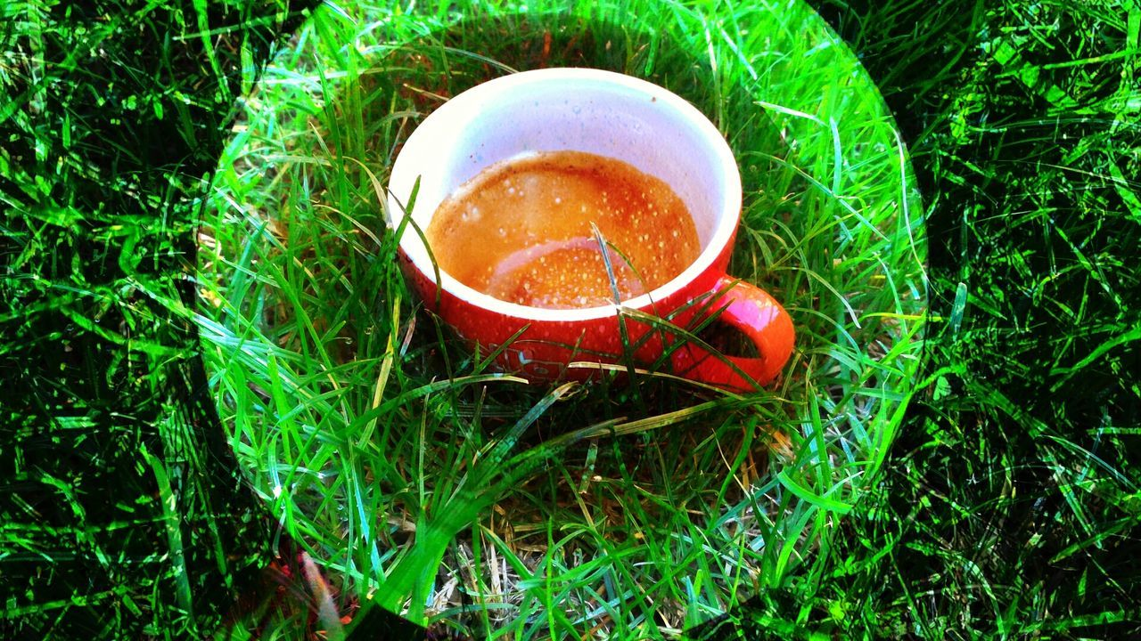 Caffè Tondo Coffee Giardino Cup Beverage Food And Drink Colazione Erba Cerchio Art Ispiration Popart Coffe Coffee Time