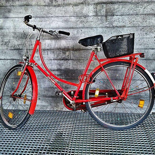 Bikegang Vintagebike Bicycle @missionbicycle @igtoppics @instagram @kyrenian @photooftheday Picoftheday pixlar instahub igdaily igser bestoftheday lgintuition androidphotography cameraphone
