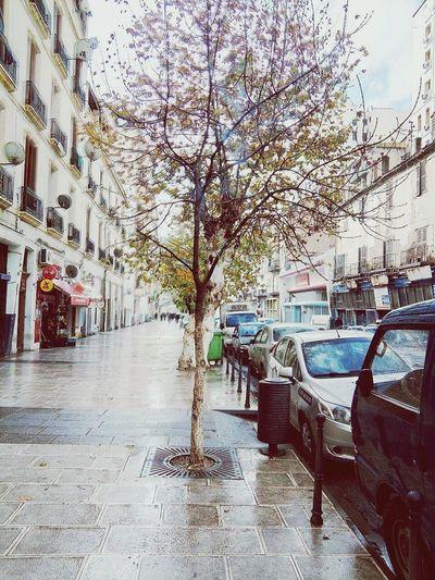 Constontine Algeria