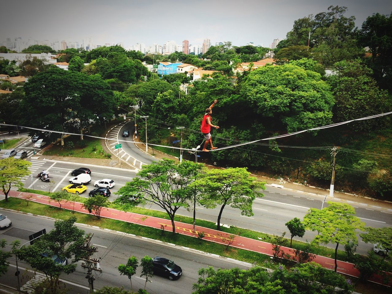 tree, high angle view, day, transportation, real people, outdoors, mid-air, growth, road, nature, full length, water, men, architecture, one person, sky, people