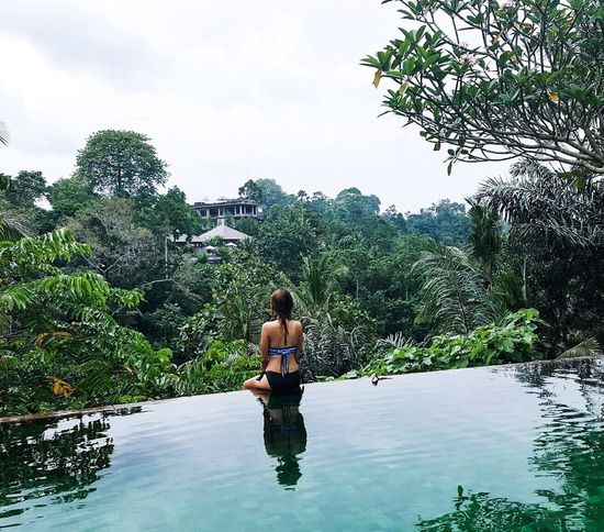 Nature Wildlife Tree Swimming Pool Flores Women Bali INDONESIA
