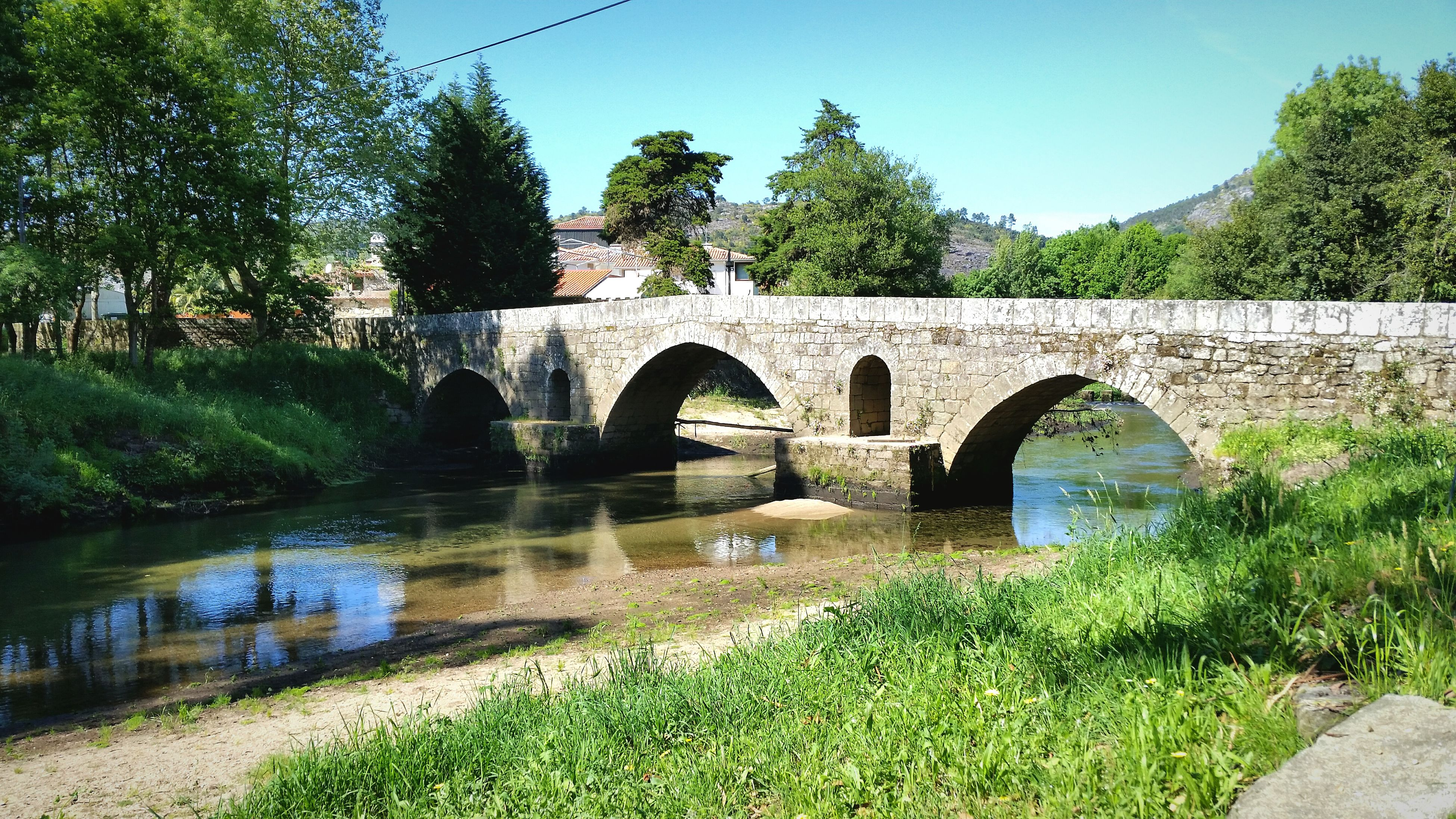 bridge - man made structure, arch bridge, arch, connection, architecture, tree, built structure, water, river, growth, transportation, reflection, day, outdoors, nature, covered bridge, no people, plant, sky, grass, beauty in nature