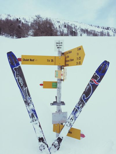 The performance, Dynafit Dynafit En La Luna #trailrunning #pedriza #maliciosa #boladelmundo #cabezasdehierro #cuerdalarga #asómatehoyos #torres #yelmo #dynafit #suuntoambitions #training #gasss #granito #primavera #spring #mountain #ilovemountains #dynafitting #dynafitfinde Dynafitfinde  Ski Snow Direction Swiss
