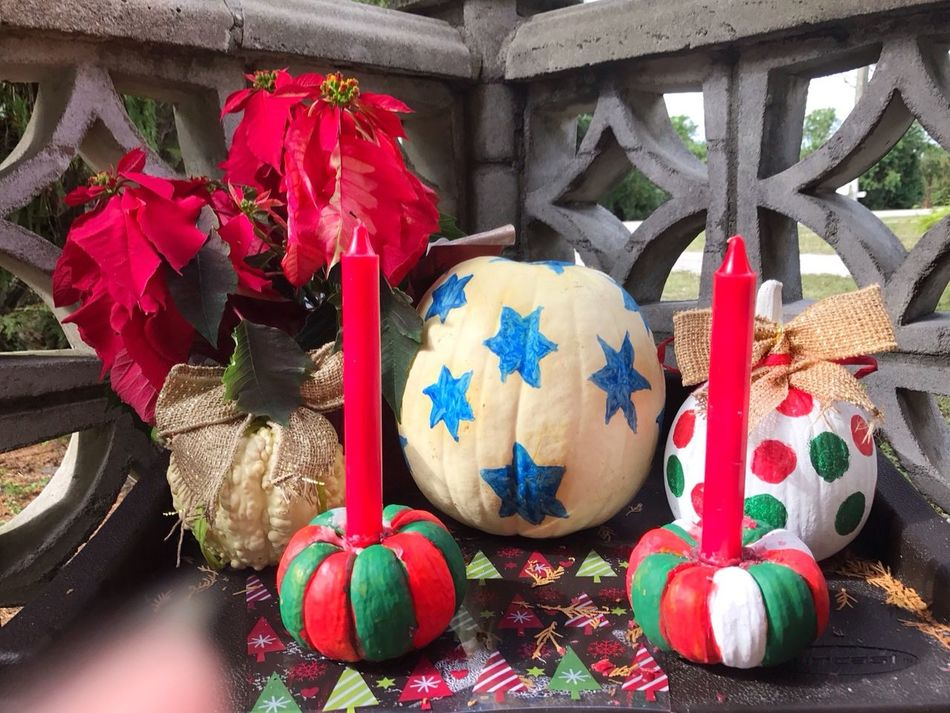 Repurposed pumpkins. HolidayDecorations Potted Plant Poinsettia Porch Decoration Lieblingsteil