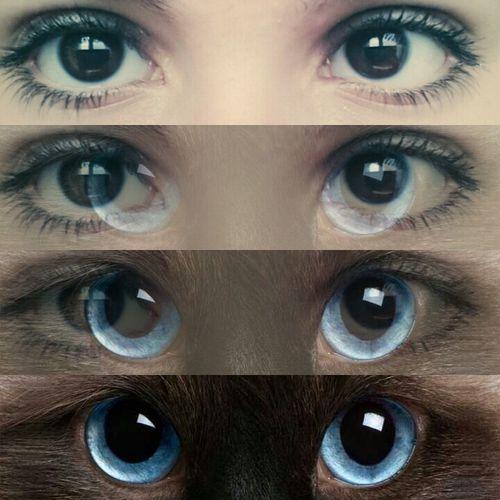 Pe cat cunosc oamenii mai bine, pe atat iubesc mai mult animalele. ♥