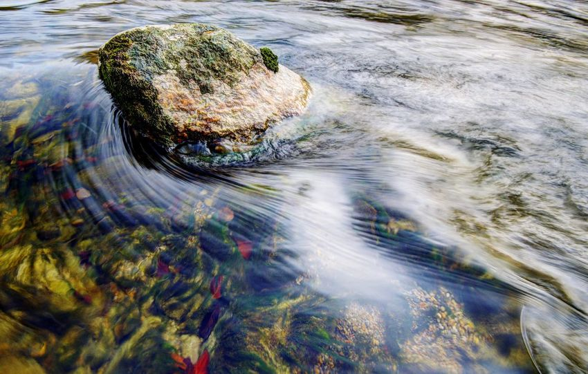 Nature River Water Water Reflections The Great Outdoors - 2015 EyeEm Awards Capture The Moment No People Thur Last saturday I stood 2 hours in the pretty cold water to get this!