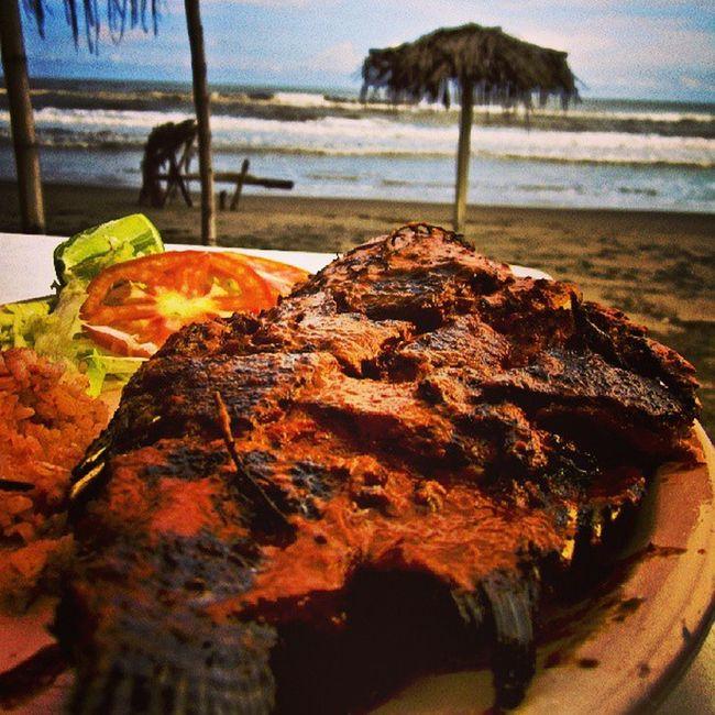 A unos metros Mexico Veracruz Casitas Playa mar costa esmeralda foodporn fish