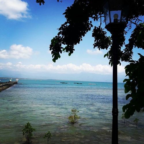 While waiting for our food Sea Beach Tree Tropical Climate Island Vacations Water