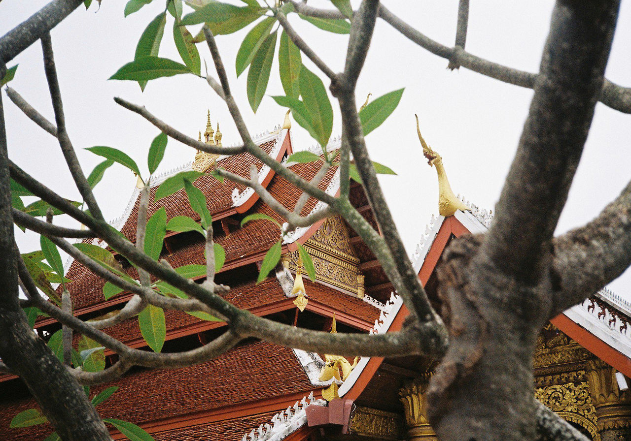 Architecture Built Structure Day Film Camera Film Photography LAO Lungprabang Temple Travel