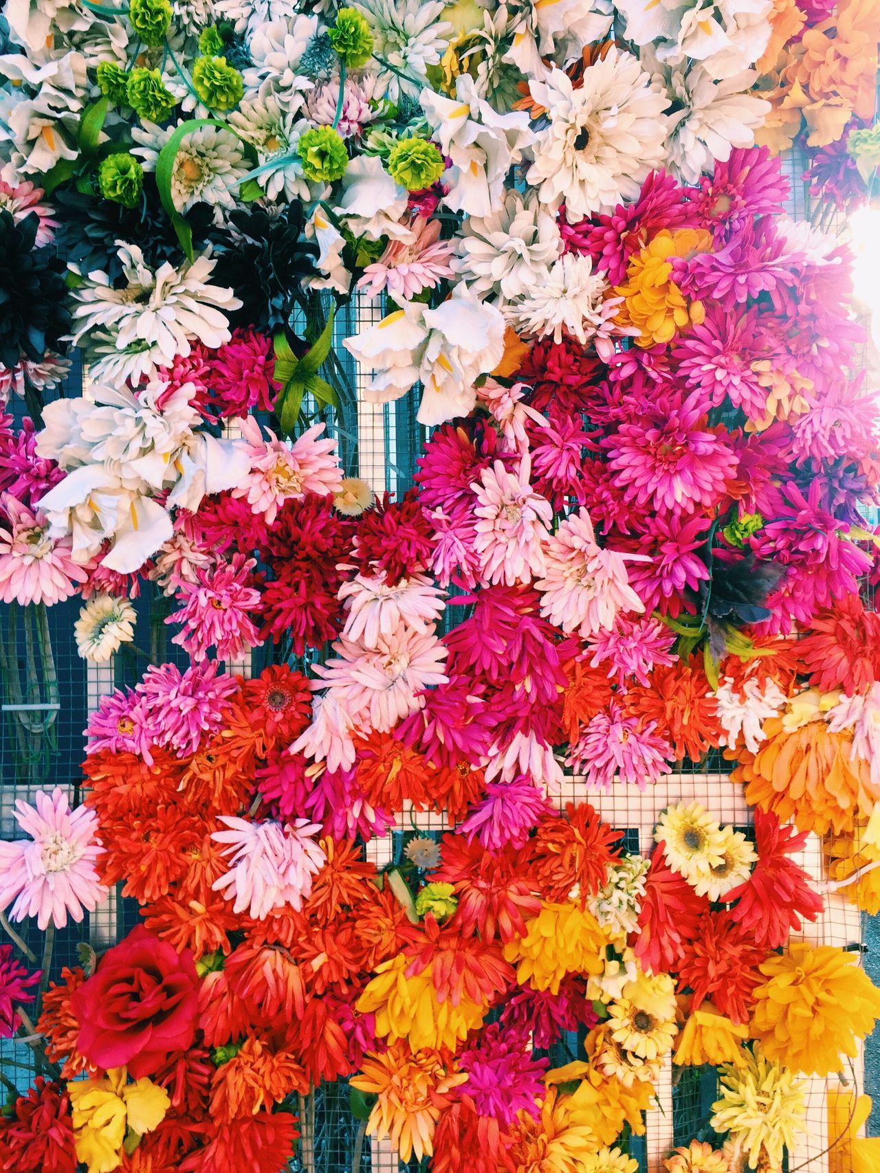 Wynwood Walls Flowers Colors Art Is Everywhere EyeEmNewHere