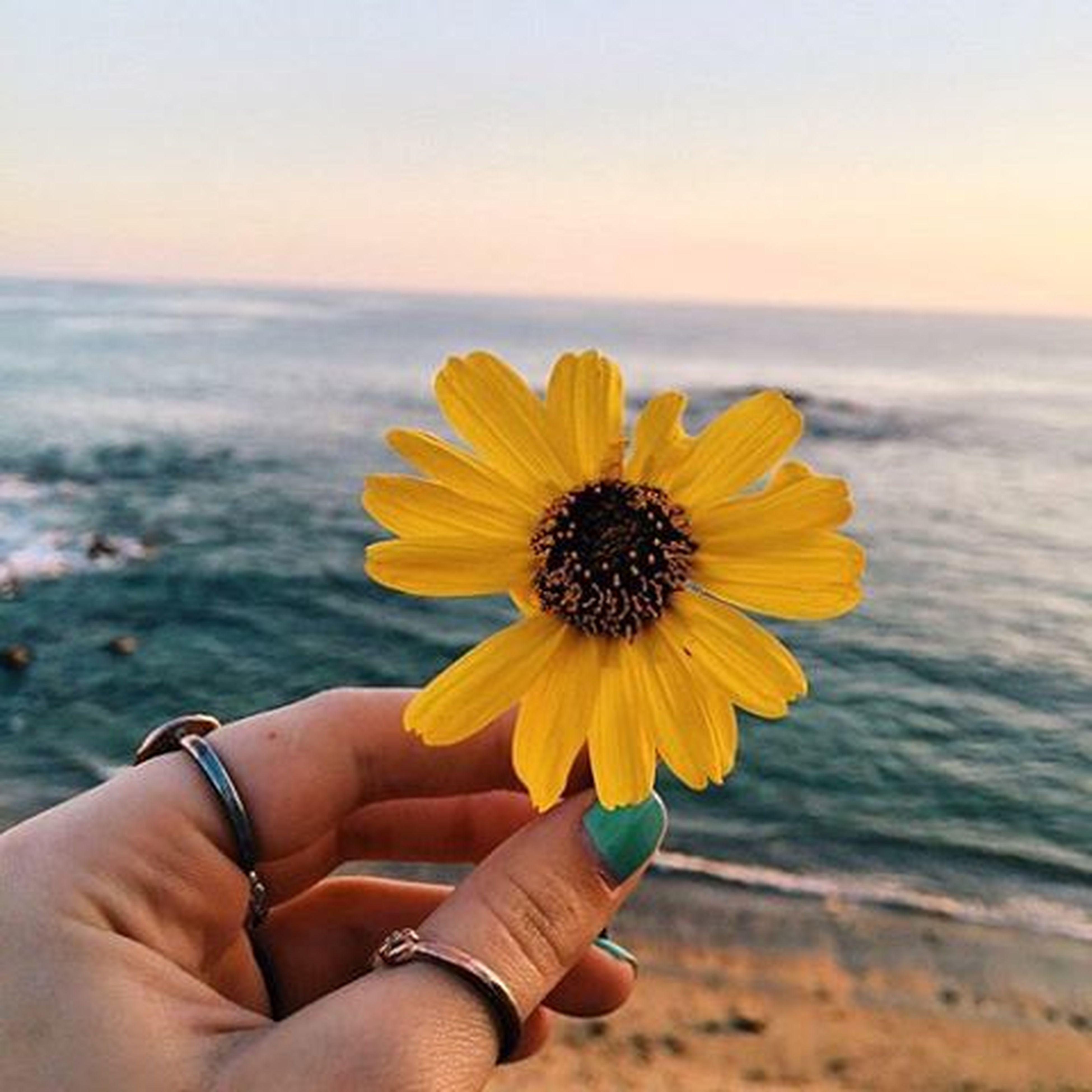 Hope you have a million reasons to be thankful today 💛 Goodmorning Sabahalkhair Dontgivemethatlook Yesitsstillmorningsomewhere Haveawonderfulday Abudhabi UAE