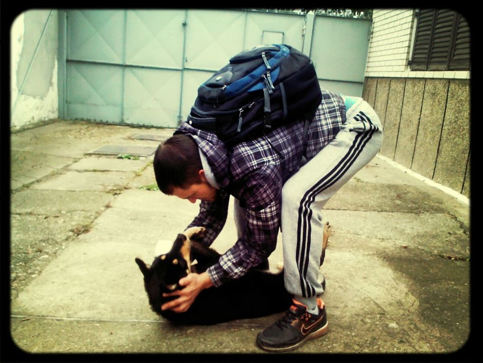 Dog Love Priceless Just Him
